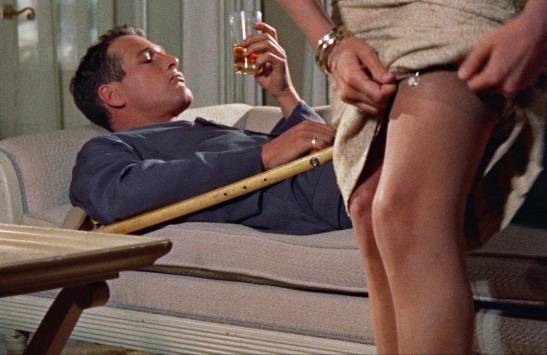 Couverture Tennessee Williams, l'écran sauvage