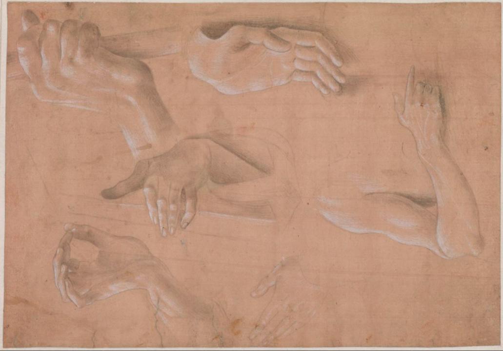 Six études de mains d'Alvise Vivarini